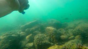 Ultrahd slowmotion podwodny strzał mężczyzna snorkeling w morzu przy troical wyspą zbiory