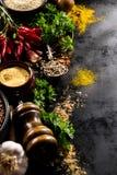 Ultramarinos apetitoso sabroso hermoso de las especias de los ingredientes para Cookin Imágenes de archivo libres de regalías