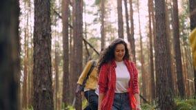 Ultrarapid av att le män och den blandras- gruppen för kvinnor som fotvandrar i skogen som går med ryggsäckar och omkring ser på arkivfilmer