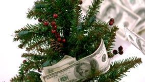 Ultrarapidräkningar på julträd lager videofilmer