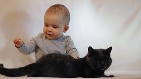 Ultrarapidskott av ståenden av lite pojken och ett kattsammanträde på soffan Kamratskapet av barnet och katten lager videofilmer
