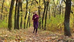 Ultrarapidspring - kvinnalöpare som joggar på höstskogbanan Rinnande utbildning för färdig kvinnlig för sportkonditionmodell slin arkivfilmer