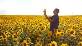 ultrarapidvideo Flaska för håll för manbondehand av solrosolja fältet på solnedgången undersökning för manlivsstilbonde arkivfilmer