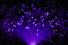 Free Ultraviolet Fiber Optic Lamp Light Royalty Free Stock Photo - 111891505