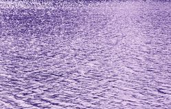 Ultraviolet Glittering Wavy Pattern Ultra Violet - Trendy Color of Year 2018 Royalty Free Stock Photography