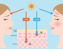 Ultravioleta A y B ultravioleta Foto de archivo