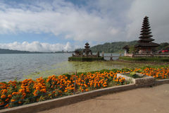 Ulun Danu and flowers Stock Photos