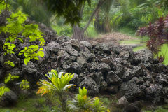 Heiau, Oahu, Hawaii Stock Image