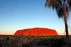 Uluru photographie stock