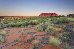 Uluru Royaltyfri Fotografi