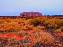 Uluru, Ayers Rock, Red Centre, Australia. Late afternoon intense red purple colours highlighting Uluru, Ayers Rock, and red soil, Australia Red Centre, Northern stock photo