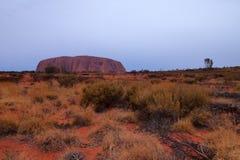 Uluru Ayers vaggar royaltyfri fotografi