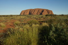 Uluru in central australia Stock Images