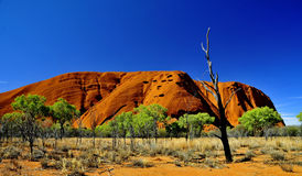 Uluru. KataTjuta national park Australia Royalty Free Stock Photos