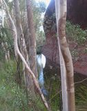Uluru, Nordterritorium, Australien 02/22/18 Waterhole, Bäume mit vielen Grün an der Basis des Felsens, niedriger Weg Uluru lizenzfreie stockbilder