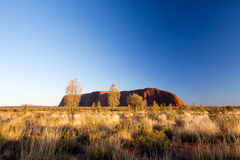 Uluru at Sunrise Royalty Free Stock Photo