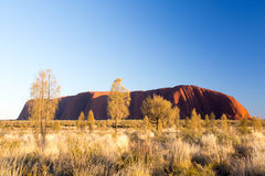 Uluru at Sunrise Royalty Free Stock Photos