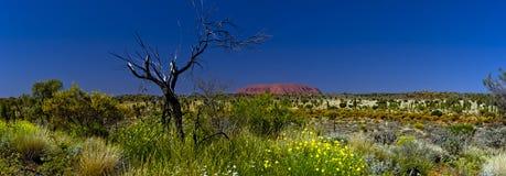 Uluru (Ayers Rock)  Stock Image