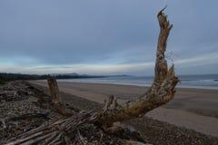 Ulverstone海滩塔斯马尼亚岛 库存图片