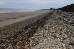 Ulverstone海滩塔斯马尼亚岛 免版税图库摄影