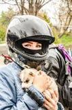 Ulyanovsk Rosja, Maj, - 03 2019: Otwarcie motocyklu sezon Dziewczyna w motocyklu hełmie z łuskowatym szczeniakiem w ona fotografia stock