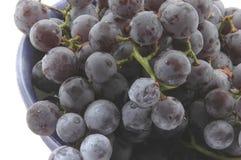 umów winogron obrazy royalty free