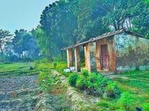 Um abrigo da chuva, terra agrícola imagem de stock royalty free
