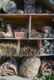 Um abrigo do jardim para a casa dos animais selvagens e dos insetos imagens de stock royalty free