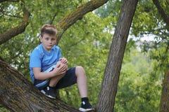 Um adolescente levanta para um fotógrafo ao andar no parque Escalou uma árvore e senta-se foto de stock royalty free