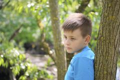 Um adolescente levanta para um fotógrafo ao andar no parque Olhar pensativo foto de stock