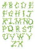 Letras do alfabeto da planta Imagem de Stock