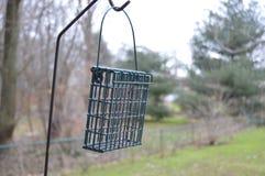 Um alimentador do pássaro na queda Fotografia de Stock