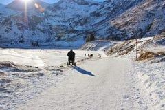Um ancião em uma cadeira de rodas aprecia a paisagem do inverno Áustria, Europa Imagens de Stock