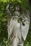 Um anjo imagem de stock