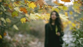 Um 25 anos do Oriente Médio de mulher adulta que anda na natureza e no outono do defocus para focalizar a área e que sorri ao vie video estoque