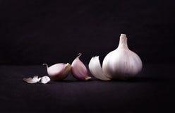 Um arranjo imóvel da vida de três bulbos inteiros do alho agrupados sobre Imagens de Stock