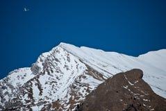 Um avião no céu azul do inverno Foto de Stock Royalty Free
