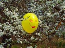 Um balão Fotografia de Stock Royalty Free