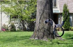 Um balanço bonito do cavalo feito fora de um pneu de borracha que pendura de uma árvore na frente de uma casa pintada do tijolo c imagens de stock