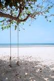 Um balanço de madeira na praia fotografia de stock