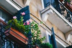 Um balcão velho com flores cor-de-rosa, detalhes de uma fachada de uma construção velha na rua do centro de Veneza, Itália Na par fotos de stock royalty free