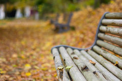 Um banco com folhas de outono Imagens de Stock Royalty Free