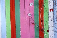 Um banco e um fundo de cores diferentes Foto de Stock