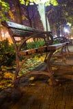 Um banco em um parque do outono Imagem de Stock