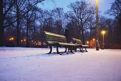 Um banco no parque no inverno Foto de Stock