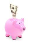 Um banco piggy cor-de-rosa e dólar americano 100 Nele Imagens de Stock