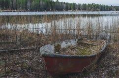 Um barco afundado danificado em um litoral de um lago cercado pelo pinheiro em um dia de verão calmo bonito fotografia de stock