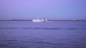 Um barco de pesca cercado por gaivotas está voltando na lagoa video estoque