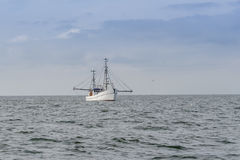 Um barco de pesca pescando com arrastão Fotos de Stock Royalty Free