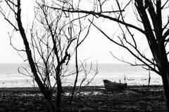 Um barco pequeno em uma costa do lago perto de algumas árvores esqueletais, em um dia temperamental Imagem de Stock